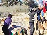 Maman fail en grimpant sur un dromadaire