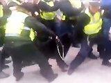 Chien policier attaque un policier