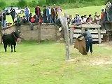 Toréro russe se fait calmer par un taureau