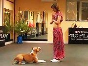 Une chorégraphie indienne avec une danseuse…