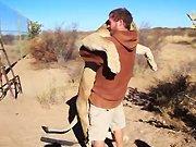 Une lionne avait envie d'un gros câlin