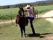 Un cowboy chevauche son canasson