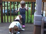Une petite fille s'amuse avec son chien