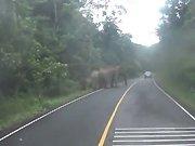 Un motard se fait charger par une famille…