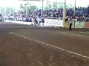 Un cheval drift avec son cavalier