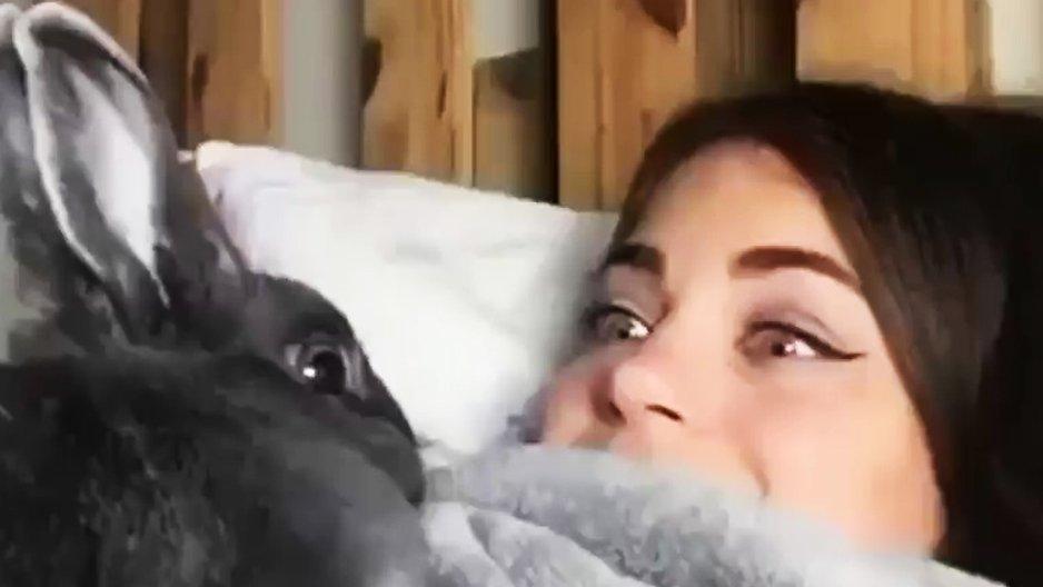 Un lapin imite une fille