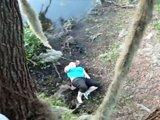 Fille obèse tombe d'un arbre